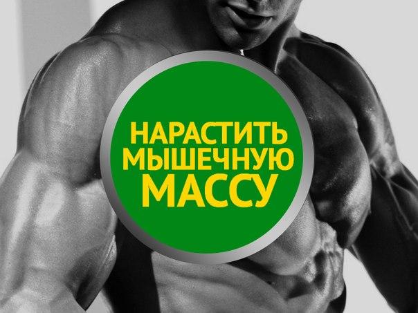 Как набрать массу тела