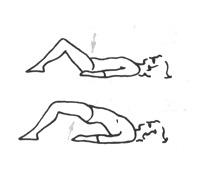 Гимнастика для укперепления мышц спины